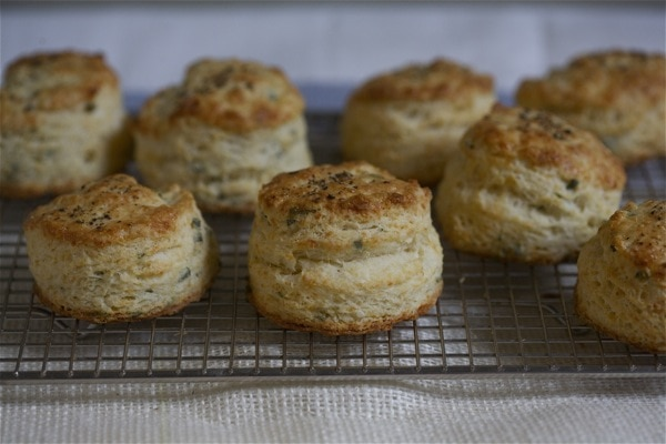 Sage and Fontina Buttermilk Biscuits // www.acozykitchen.com