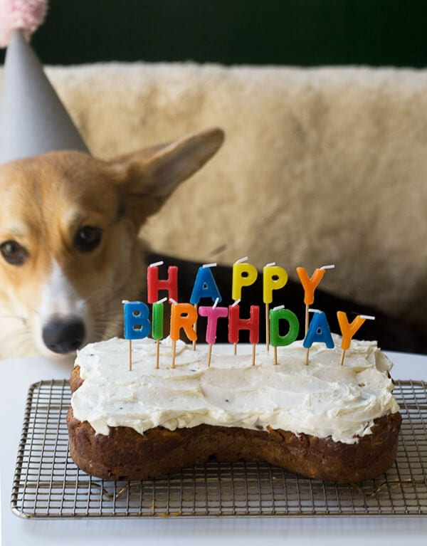 Happy Birthday, Amelia // www.acozykitchen.com