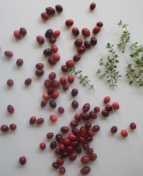 Cranberry Thyme Gin & Tonic   www.acozykitchen.com